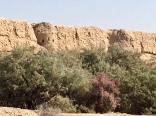 Watch towers in fortress wall of Shahryar Ark, residence of Seljuk sultans